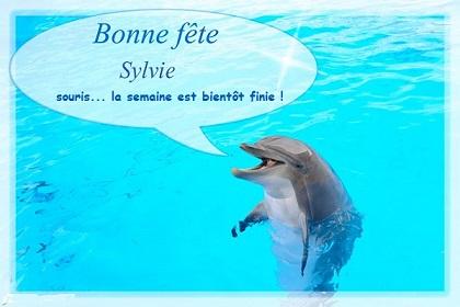 Sylvie-1