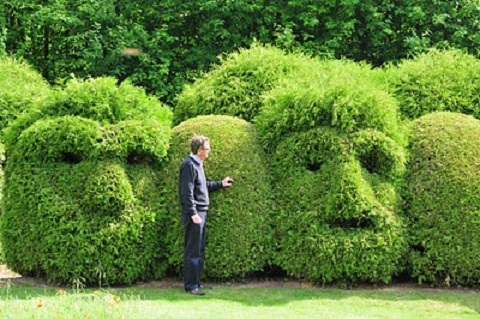 Jolie haie - Le petit jardin quilt pattern calais ...