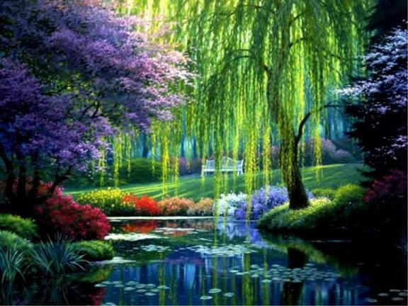 Jardin magnifique | abenchaalors.fr