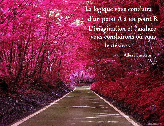 magnifique724058_n