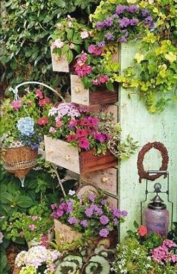 jardin003(p11)