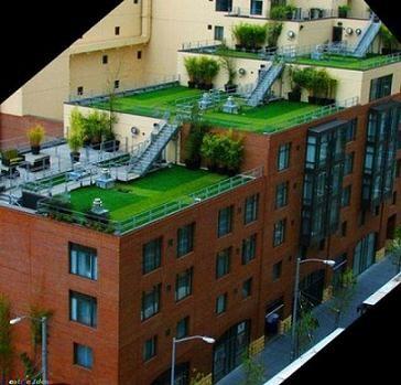 Jardin sur le toit for Jardin sur le toit