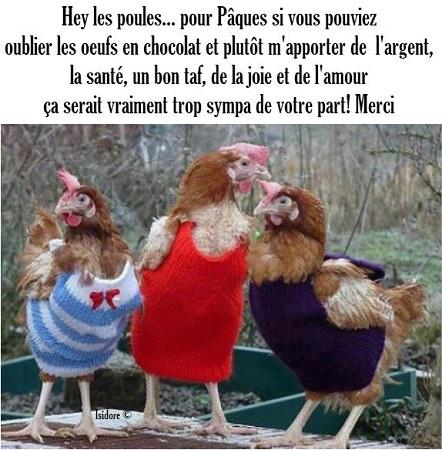 Poules de p ques - Poules de paques ...