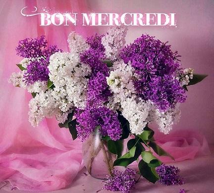 mercredie39_n