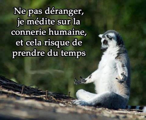 humour426_n