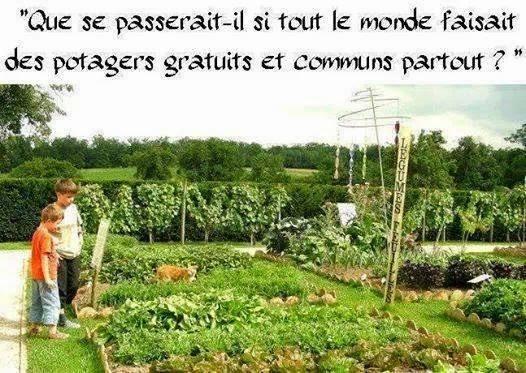 jardin555_n