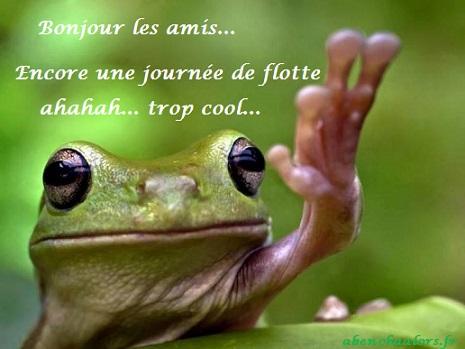 bonjour13_n