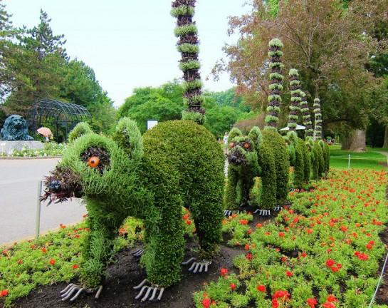jardin montréal432