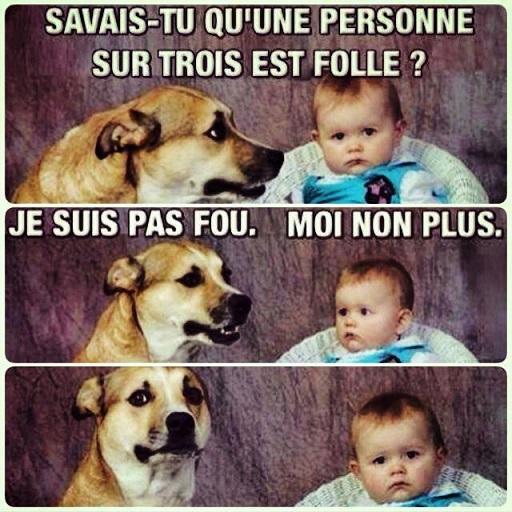 humour515153_n