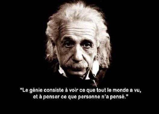 citation Einstein3983_n