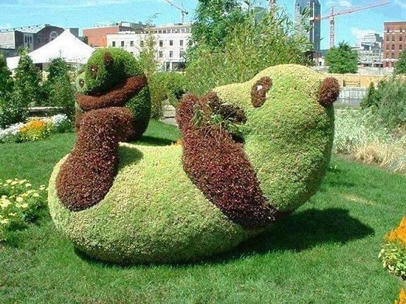 jardin599_n