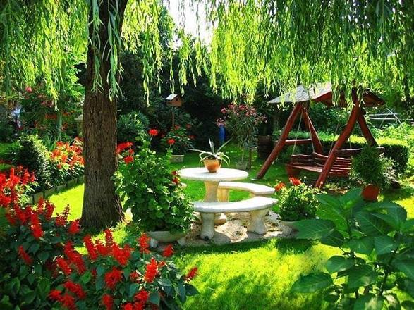 Jardin d tente - Coin detente petit jardin zen ...