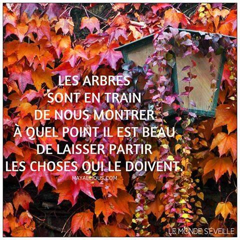 automne16_n