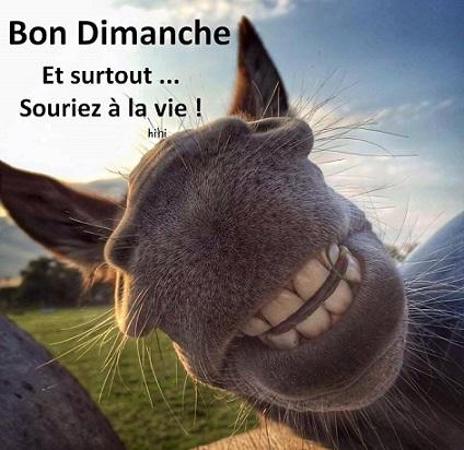 """Résultat de recherche d'images pour """"bon dimanche humour"""""""