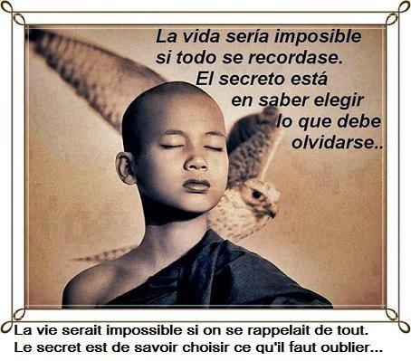 a-mediter0