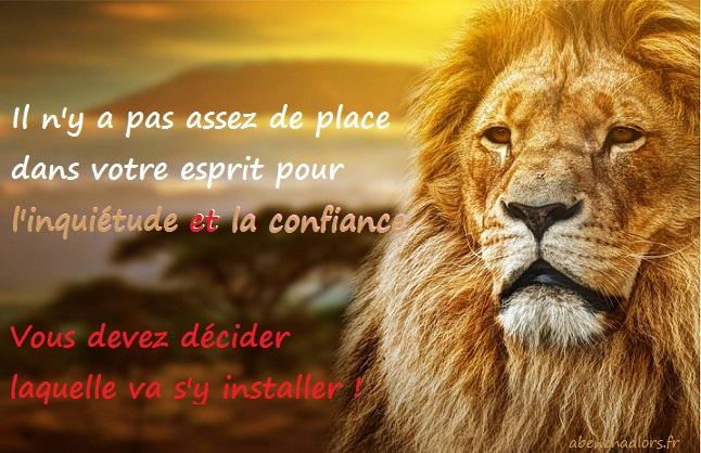 lion7130_o