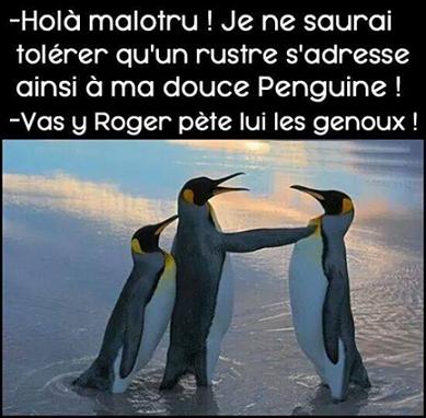 humour6_n