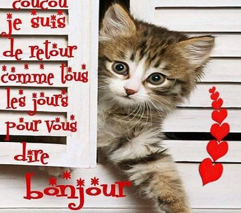 bonjour717_n