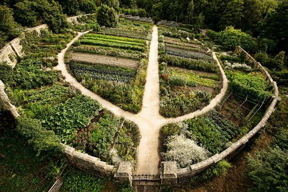 jardin456