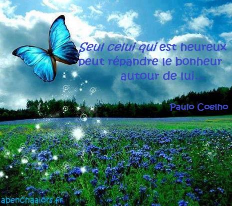 papillon235_n