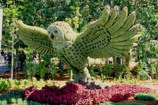 jardin montréal63