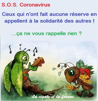 coronavirus 12
